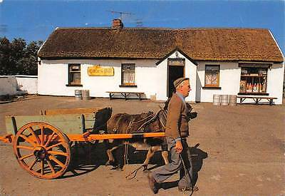 Ellen's Pub, Maugherow Co Sligo Donkey Cart