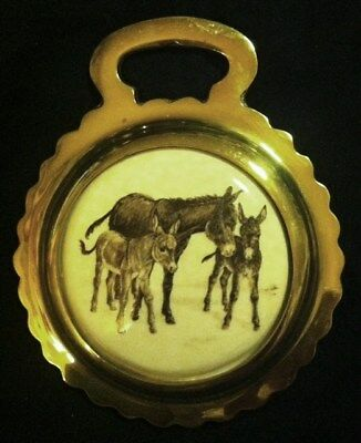 NEW MINIATURE DONKEYS Ceramic Horse Brass Rare DONKEY LOVER Gift WOW YOUR WALLS!