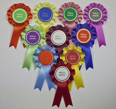 Mini Winner/Well Done/Clear Round Rosettes x 10 Assorted. Shows, Party Games etc
