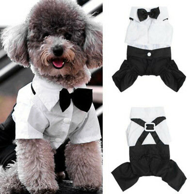 Small Pet Dog Cat Clothing Prince Wedding Suit Tuxedo Bow Tie Puppy Clothes Coat  sc 1 st  PicClick & US FOR Small Dog Pet Fashion Tuxedo Bow Tie Suit Coat Clothes Puppy ...