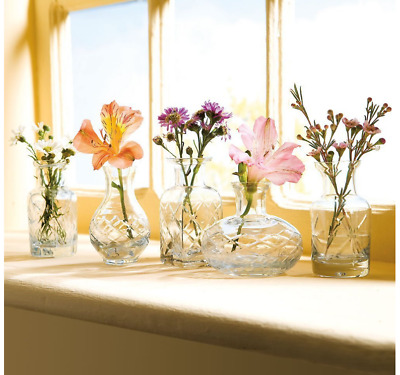 Small Cut Glass Vases In Differing Unique Shapes Set Of Five Flower Dish Vase