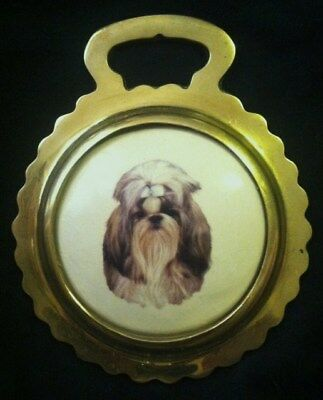 NEW DOG SHIH TZU Ceramic Horse Brass England SHIH TZU Lover Gift WOW YOUR WALLS!