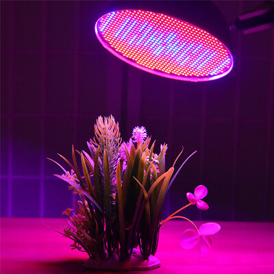 120° 80W LED Grow Light E27 Lamp Bulb for Plant Hydroponic Spectrum Red/Blue