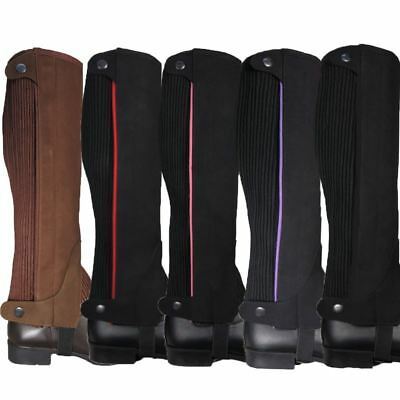 Riders Trend Two Tone Half Chaps - Equestrian Stretching Short Boot Horse Riding