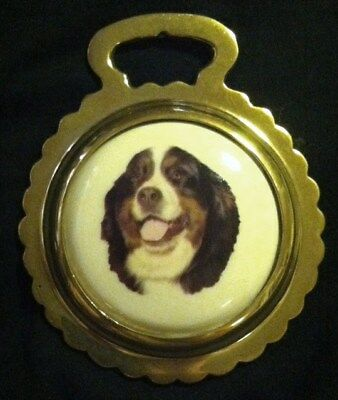 NEW BERNESE MOUNTAIN DOG Ceramic Horse Brass BERNESE DOG Lover! WOW YOUR WALLS!