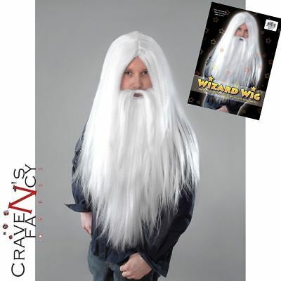Wizard Wig & Beard Set Merlin Gandalf Dumbledore Classic Magician Fancy Dress