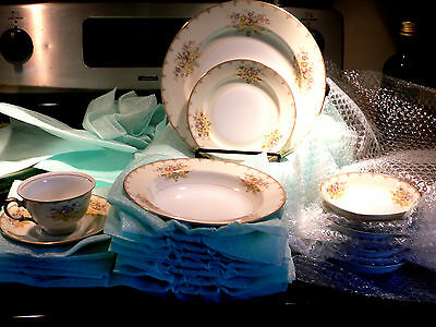 MEITO LINDEN HAND PAINTED  CHINA  w/ GOLD TRIM   44 PC SET  MADE IN JAPAN