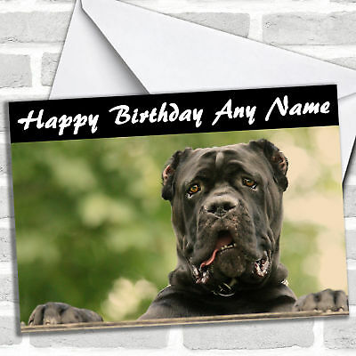 Cane Corso Dog Birthday Customised Card