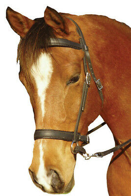 Star Padded Comfort Bridle Sipdepull Bitless with Reins Black Full Cob Pony