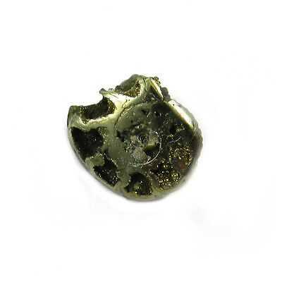 1Pcs Rare Product 21MM Russian Pyrite Ammonite Fossil Jewelry Gemstone GS00837