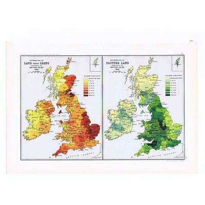 BRITAIN Land Distribution for Crops and Pasture- Antique Map 1904 by Bartholomew