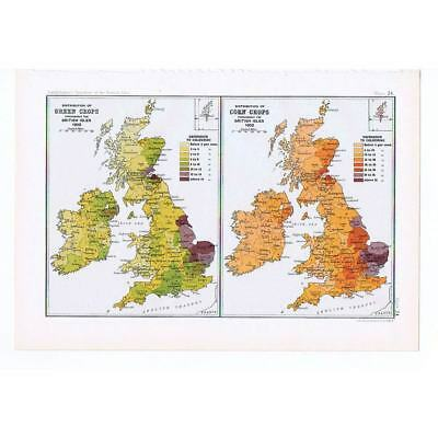 BRITAIN Distribution of Green and Corn Crops - Antique Map 1904 by Bartholomew