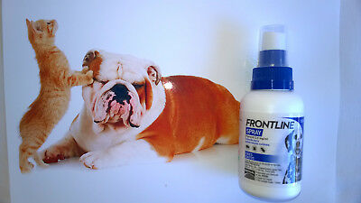 Spray 100ml FRONTLINE (antiparasitic) For DOGS & CATS (Chiens Chats Gatti Cane)