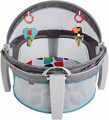 Fisher-Price On-The-Go Baby Dome, Gender Neutral