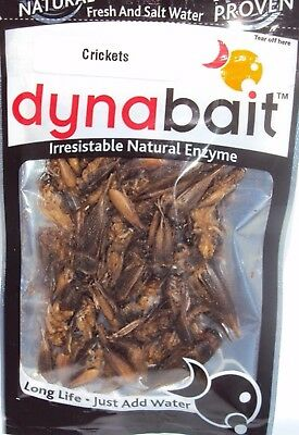 Dynabait Freeze Dried Crickets Fishing Bait Bream Bass Trout Cod