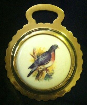 NEW BIRD WOOD PIGEON Ceramic Harness Brass PIGEON LOVER Gift! WOW YOUR WALLS!