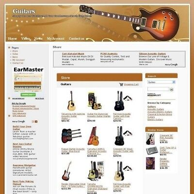 Established Online New Guitars Store Business Website For Sale! Free Domain Name