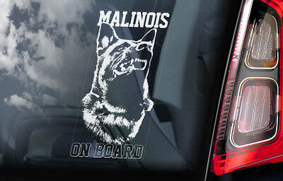 Belgian Malinois on Board - Car Window Sticker - Mechelse Dog Sign Decal - V03