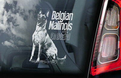 Belgian Malinois on Board - Car Window Sticker - Mechelse Dog Sign Decal - V15