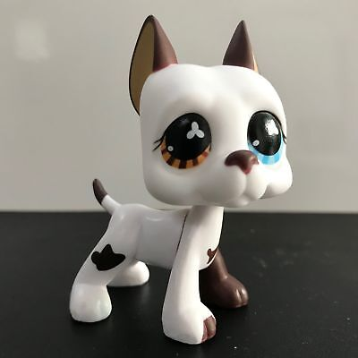 Littlest Pet Shop LPS Toys Figure Great Dane Dog Collection Rare Girl's Gift 577