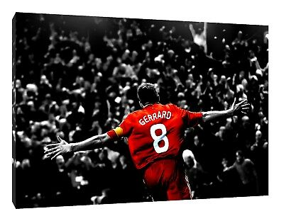 Steven Gerrard Oil Painting 28x16 NOT a print poster.Box Framing Avail.Liverpool