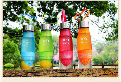 Christmas Gift Fruit Infuser Infusing Sport Cycle Detox Slimming Water Bottle