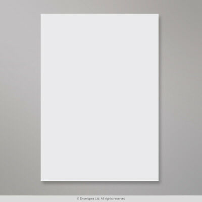 (C3) White Board-Back Envelope 457x324 mm ( HB457W )