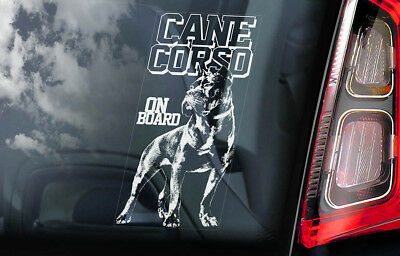 Cane Corso on Board - Car Window Sticker - Dog Sign Decal Italian Mastiff - V01