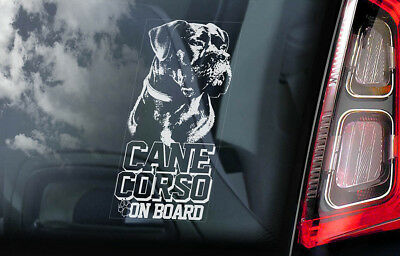Cane Corso on Board - Car Window Sticker - Dog Sign Decal Italian Mastiff - V06