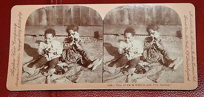 Antique Vintage 1899 Black Americana Two Kids with Puppies Stereoview Card