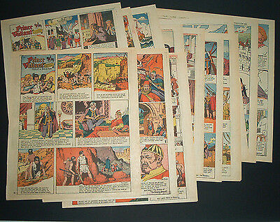 1968 Jhg. Prinz Eisenherz 30x  Sunday Pages Prince Valiant