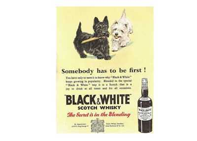 Black and white scotch whisky retro vintage style metal wall plaque sign