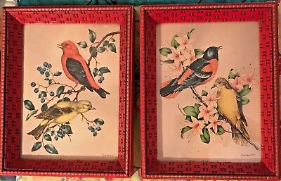 Vintage A Pair Of Small Gems - Bird Prints Signed-Beautiful Hand Crafted Frames