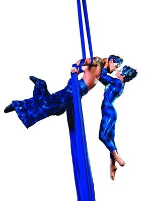 (Royal Blue) - Dasking Premium Aerial Silks Equipment - Safe Deluxe Aerial Kit