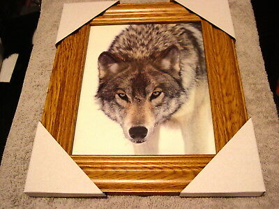 Wolf 11X13 Mdf Framed Picture Poster #2 ( Wood Color Frame )
