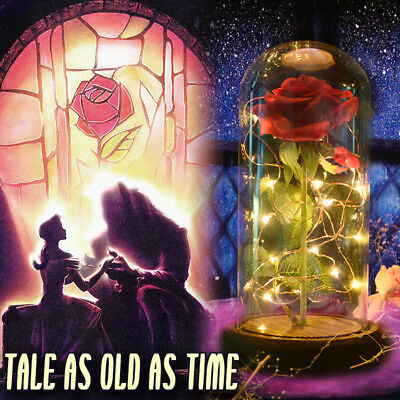 WR Beauty and the Beast Enchanted Rose in Glass Dome LED Lights Valentines' Gift