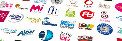 Bespoke Business Logo Design + Unlimited Revisions. Cheap, Fast & Professional