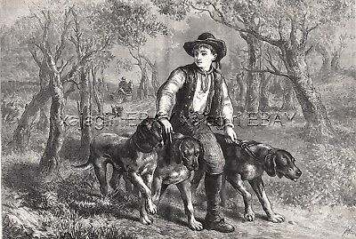 Dog Bloodhounds 3 Walked by Boy, Large 1870s Antique Engraving Print & Article