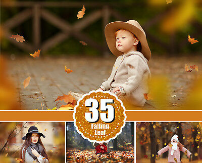 35 Autumn falling leaves Photo Overlays, Photography, Photoshop overlay png file