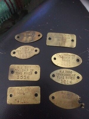 8 BRASS DOG LICENSES TAGS from TOMS RIVER  & BRICK NJ