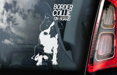Border Collie on Board - Car Window Sticker - Sheepdog Dog Sign Decal Gift - V01