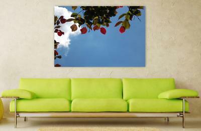 Canvas Poster Wall Art Print Decor Leaves Coloring Walnut Sky Blue