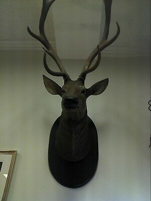 Antique Black Forest carved wood wall mounted deer head