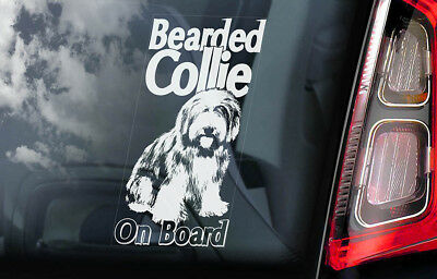 Bearded Collie on Board - Car Window Sticker - Highland Mountain Dog Decal - V01