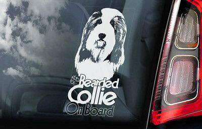 Bearded Collie on Board - Car Window Sticker - Highland Mountain Dog Decal - V02