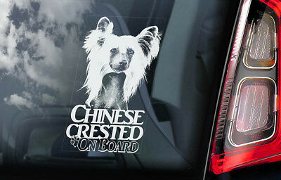 Chinese Crested Dog on Board - Car Window Sticker - Sign Gift Idea Decal - V03