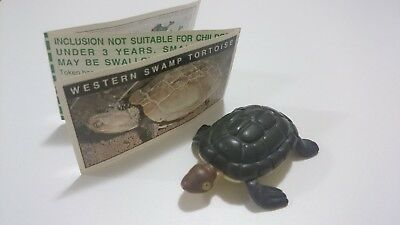 "Cadbury Yowies AU Series 1 RARE ""Striped Shell"" Western Swamp Tortoise Variation"