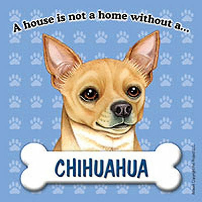Chihuahua Dog Magnet Sign House Is Not A Home Tan