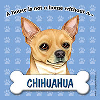 Chihuahua Magnet - House Is Not A Home Tan