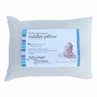 Little Dreamer Toddler Pillow with Organic Cotton Cover